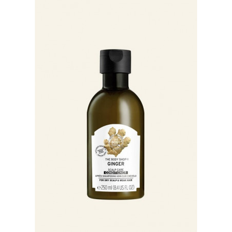 The Body Shop Ginger Scalp...